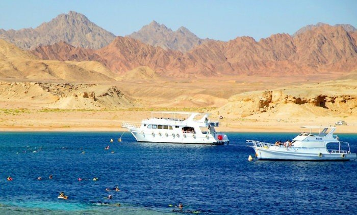 Book Trip to Ras Mohammed From Sharm Port
