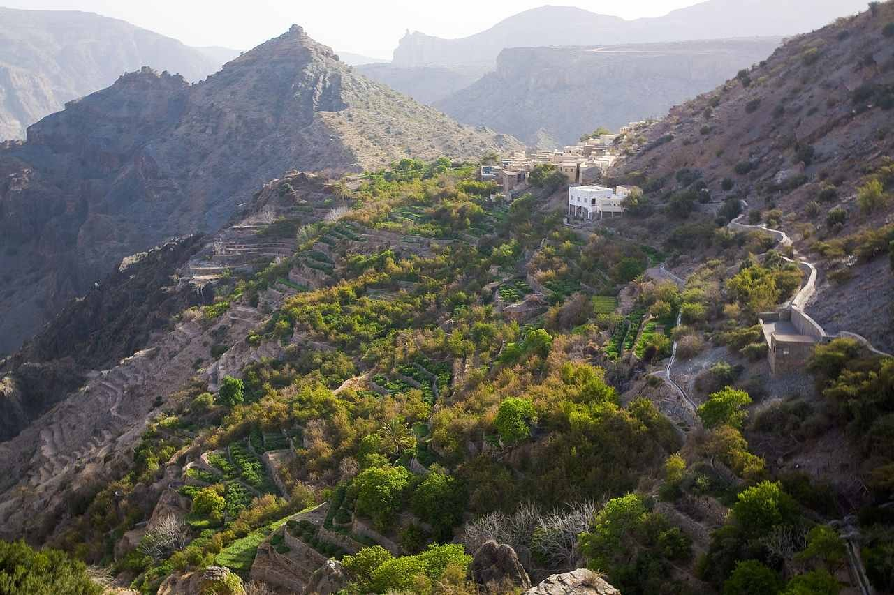 Nizwa & Jebel Akhdar Tour From Muscat Port
