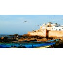 Essaouira Full Day Excursions From Agadir Hotel