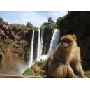 Ouzoud Waterfalls Excursions From Marrakech Hotels